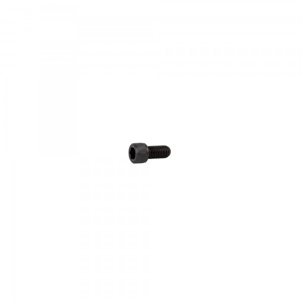 Cylinder screw with hexagon socket ISO 4762 (SuperSaw 550-10 / 550-19, 650-S, 651-S)
